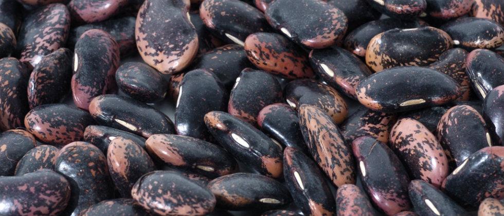 Traditioneller Käferbohnensalat
